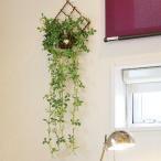 光の楽園 光触媒グリーンタペストリー(人工観葉植物) 壁掛けジャスミン花付