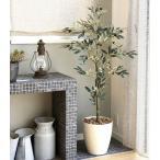 Yahoo!光の楽園ショップ モントブレッテ光触媒人工観葉植物 オリーブ1.3m、新商品
