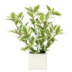 Yahoo!光の楽園ショップ モントブレッテ光触媒観葉植物テーブルタイプ(人工植物) ミニリーフG/W、新商品