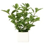 Yahoo!光の楽園ショップ モントブレッテ光触媒人工観葉植物テーブルタイプ ミニリーフ、新商品