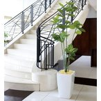 Yahoo!光の楽園ショップ モントブレッテ光触媒人工観葉植物 光の楽園 アーバンブランチウンベラータ1.8m、新商品