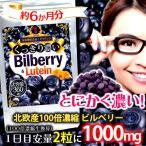 くっきり濃いビルベリー&ルテイン(栄養機能食品:ビタミンA) 360粒 約6か月分 送料無料(クロネコDM便・ポスト投函・日時指定不可)
