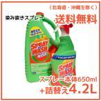 【送料無料】 スプレーインウォッシュ 染み抜きスプレー 650ml + 4.2L Spray'n Wash Resolve しみぬき シミ