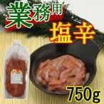 【業務用メガ盛り!!】塩辛 750g チューブタイプで便利!! 冷凍便 / 冷蔵便可