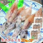 ほたるいか 蛍いか 生ホタルイカ 生食用 20尾入り 3パックセット 珍味 刺身 冷凍便 お取り寄せグルメ ギフト ひな祭り