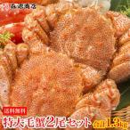 特大毛蟹 2尾セット 計1.3kg 1尾平均650g ギフト/ケガニ/毛ガニ/冷凍便