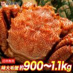 ロシア産 毛ガニ 特大1尾約875g 送料無料 毛蟹 毛がに ケガニ 蟹 カニ かに お取り寄せグルメ ギフト