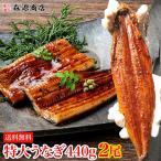 特大うなぎ蒲焼き440g (2尾セット) ウナギ 鰻 タレ付 送料無料