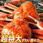 蟹 カニ かに ズワイガニ 姿ずわい蟹 4.5kg 5〜8尾 冷凍便