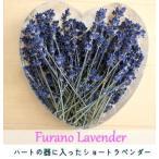 【送料無料】富良野ラベンダードライフラワー通販・花束・ハートの器に入ったショートラベンダー約25g