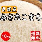 米 送料無料 愛媛県産 あきたこまち 10kg  10キロ 四国 令和2年産