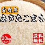 米 送料無料 令和元年産 愛媛県産 あきたこまち20kg(10kg×2) 20キロ 四国