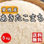 米 送料無料 愛媛県産 あきたこまち 5kg  5キロ 四国 令和2年産
