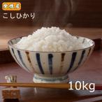米 送料無料 令和元年産 愛媛県産 コシヒカリ 10kg こしひかり 10キロ 四国