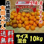 有田みかん サイズ混合10kg 森崎農園 農家の味ふる里みかん 送料無料 和歌山産