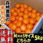 和歌山産 有田みかん Mサイズ 5kg 森崎農園が育てた「ふる里みかん Mサイズ 5kg」