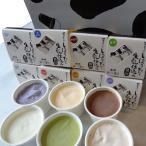 搾りたて生乳アイスクリームセット ( 塩みるく・いちご・生姜・緑茶・ブルーベリー・フレッシュみるく・チョコレート ) 高知 四万十 窪川