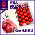特選品[A-002]【市場直送便】徳谷トマト/2.0kg 化粧箱詰