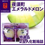 特選品[A-008]夜須町エメラルドメロン/2玉入化粧箱詰