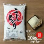 米 10kg 国産 こしひかり 5kg×2袋  コシヒカリ 送料無料 お米 令和2年産