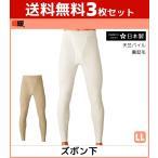3枚セット 暖か暖かあったか 長ズボン下 LLサイズ グンゼ ステテコ すててこ DDM202A-LL-SET