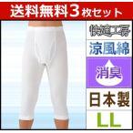 ショッピングステテコ 3枚セット 快適工房 涼風綿 半ズボン下 LLサイズ グンゼ ステテコ すててこ KH6407-LL-SET