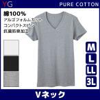 YG VネックTシャツ グンゼ