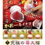 スクイーズ もち 香る究極の苺大福 キーホルダー 大福餅 食品サンプル 可愛い もちもち やわらか 癒しグッズ 選べる全5種