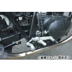 BEET 日本ビート工業 ハイパーバンク(シルバー 固定式) 250TR