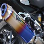 アールズギア RB01-03RD スリップオンチタンマフラー ワイバンリアルスペック ドラッグブルー 水冷 【BMW】 R1200GS/GS-A