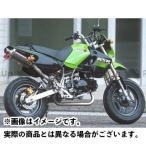 STRIKER POWER MINIキャノンタイプマフラーA(ストリート/センターUP1本出し) KSR110
