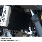 R&G ラジエターガード(ブラック) SV650