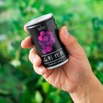 山形代表 赤ぶどう ストレートジュース 160g
