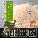 新米 2年産 ササニシキ玄米30kg  送料無料
