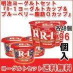 明治 R-1ヨーグルト&ブルーベリー脂肪0セット meiji 各48個入(計96個)