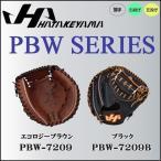 野球 グラブ グローブ 一般 硬式用 ハタケヤマ HATAKEYAMA PBW SERIES キャッチャーミット 捕手用