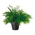 IKEA イケア FEJKA 人工観葉植物, House bamboo (301.919.94)