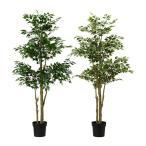IKEA/イケア FEJKA 人工観葉植物, ベンジャミン アソートプランツ(色の希望がなければおまかせになります) (902.399.12)