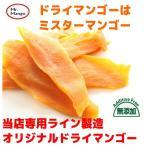 送料無料 ドライマンゴー 無添加 (食品添加物無し)  100g ミスターマンゴーオリジナル