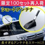 ショートアンテナ  3.5cm 8cm 12cm リアルカーボン仕様 ラジオ カーナビ 選べる3サイズ タント ムーヴ NBOX ソリオ ワゴンR