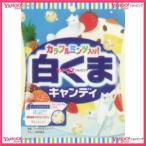YCxパイン 70G 白くまキャンディ×80個 +税 【xr】【送料無料(沖縄は別途送料)】
