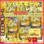 YCメイジチューイング 25グラム  スッパスギール レモン味 ×9袋 +税 【ma9】【メール便送料無料】