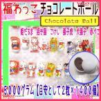 おかし企画 OE石井 3000グラム【目安として2粒×約840個】   福わっこ チョコレートボール 【チョコ】×1袋 +税 【fu】