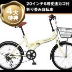 ショッピング自転車 折り畳み自転車 20インチ6段変速カゴ付折りたたみ自転車 FB-206R (IV) 2015 (OTOMO Raychell FB-206R) (24213)