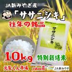 新米 令和2年産 通販 ササニシキ 宮城県産 10Kg 特別栽培米(減農薬・減化学肥料) ささにしき 一等米 精米 送料無料(一部地域を除く)