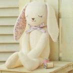 Yahoo!m's-styleハマナカ 手作りキット やわらか手触りのウサギ H434-024 オーガニックコットン グッドナイト