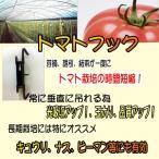 トマトフック トマト栽培フック 1セット100個入り トマト トマト栽培 トマト誘引フック 誘引トマトフック 1セット100個入り