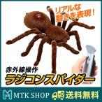 ラジコンスパイダー (S787) 赤外線 2CHラジコン操作 蜘蛛 おもちゃ いたずら ドッキリ クモ くも [送料無料]