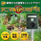 動物撃退器 超音波 1台 猫よけ対策 害獣駆除 猫 猪 カラス ネズミ ハト 撃退 ソーラー 防水 害獣駆除 (SOAB01)
