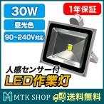 人感センサー付き LED 投光器 30W (STL30W) 昼光色 LED投光器 6000K 2400LM 照射角120度 IP65 防水 [送料無料][ledライト][屋内][屋外]
